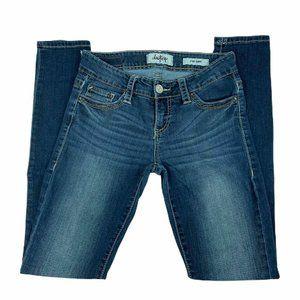 Daytrip Jeans Size 26R Lynx Skinny Embellished